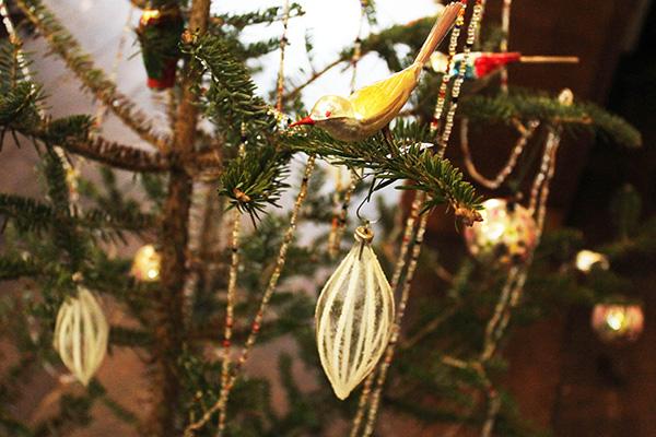 wcharkha-tree-2